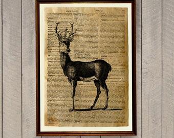 Wildlife print Deer decor Animal poster Dictionary page WA335
