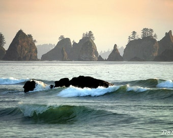 Washington Coast in Sunset, Shi Shi Beach, Olympic National Park, USA. Nature Landscape photography