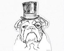Winston - English Bulldog Decal Sticker, English Bulldog Art, English Bulldog Print, Gifts For Dog Owner, Dressed Dog, Bulldog Decal