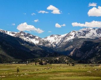 Moraine Park, Rocky Mountain National Park #2029