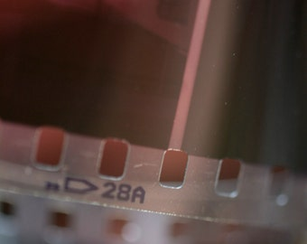 35mm Color Film Processing And Printing-- Send Us Your Film And Get Negatives, Prints, And CDs: C41 Color Process
