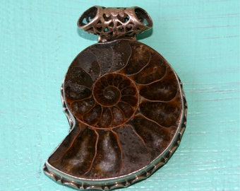 Sterling Silver, Sea Shell, Pendant