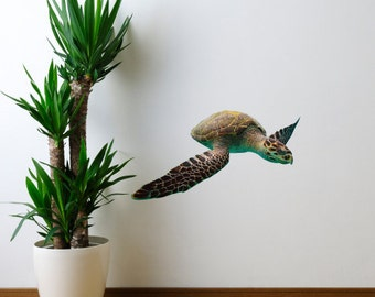 Hawksbill Sea Turtle Sea Life Vinyl Decal - Eretmochelys imbricata