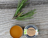 Ponderosa Pine Salve - three ingredient antiseptic first aide salve made from local wildcrafted pine resin