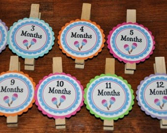 Maraca Photo Clips. Photo Clips. Set of 13. Newborn to 12 Months. Cinco De Mayo. Fiesta. Music