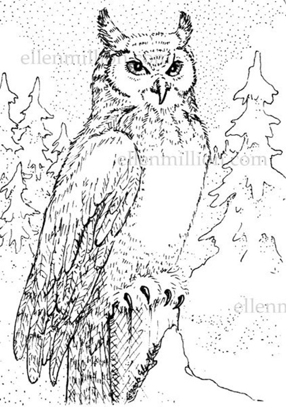 great horned owl coloring outline coloring pages