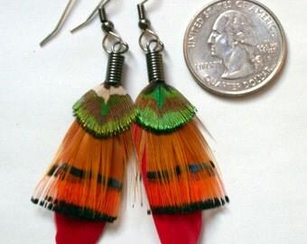 Fire Dancer Feather Earrings