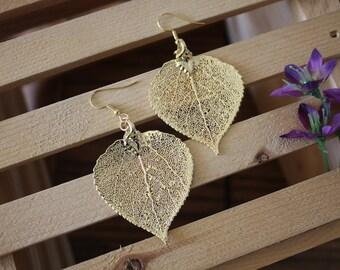 Medium Gold Leaf Earrings, Aspen Leaf, Real Leaf Earrings, Aspen Earrings,24kt Gold, Nature, Large Leaf Earrings, Gold Aspen Leaf, LEP57