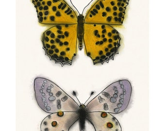 "Butterfly art drawing : Orange and Lilac butterflies 8.3"" X 11.7"" print - 4 for 3 SALE"
