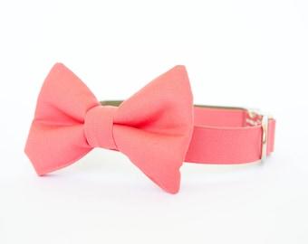Bowtie Dog Collar - Coral Gentleman's Collar
