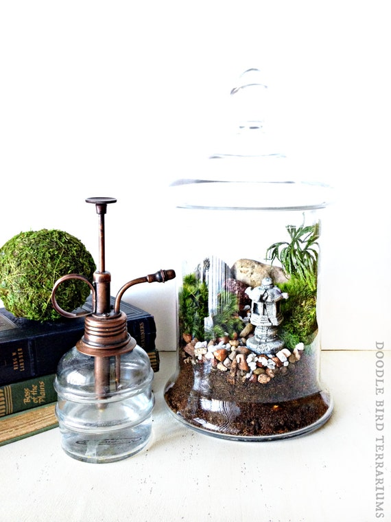 jardin japonais vente terrarium avec arbre de chemin pagode. Black Bedroom Furniture Sets. Home Design Ideas