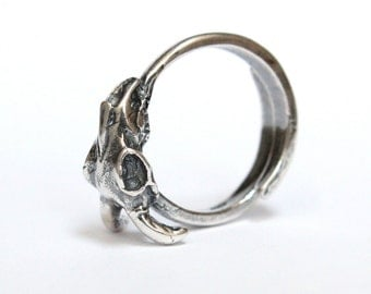 Little Silver Ram Skull Ring 424