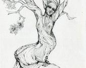 Dancing Juniper Tree Original Ink Drawing