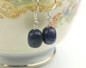 Blue Sodalite Earrings- Sterling Silver - Blue Earrings - Sodalite Gemstone Earrings - Chakra Jewelry - Minimalist Jewelry