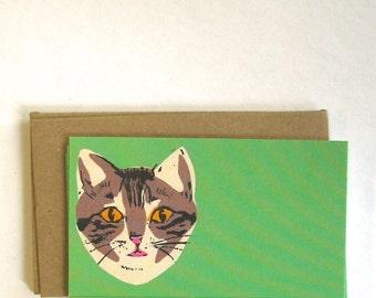 Green Cat Enclosure 6pack