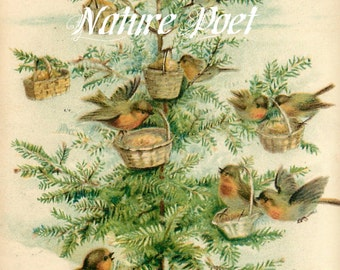 The Bird's Christmas Reproduction Downloadable Printable Digital Art Image Instant Download