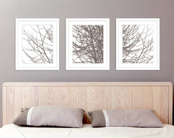 Modern Tree Branches Art Prints   Set Of 3 11x14 Prints   Taupe Brown  Winter Tree