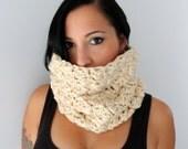 Arctic Textured Cowl Neck Cozy, Neck Warmer, Crochet Off White Cowl