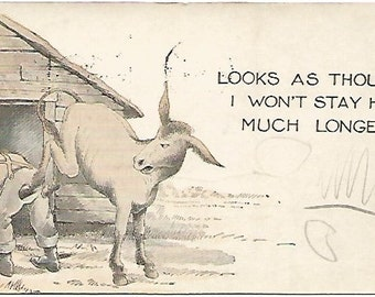 Donkey Comics Postcard  Looks As Though I won't Stay Here Much Longer Vintage Postcard