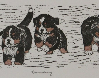 "Bernese Mountain Dog puppies hand-colored block print, limited edition - ""Bounding"""