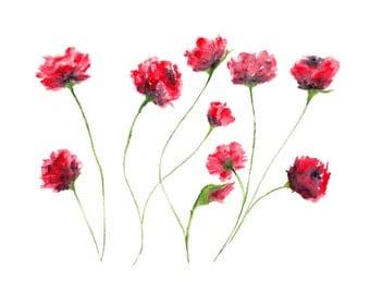 watercolor painting watercolor flowers flower painting watercolor poppies flower art red