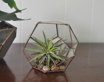 Calix Terrarium Kit, small half dodecahedron glass terrarium -- stained glass -- copper or silver color -- eco friendly