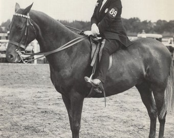 Contestant 89 - Vintage 1930s Equestrian on Show Horse Press Photograph