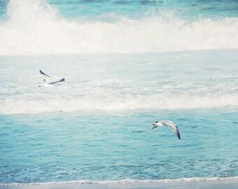 Coastal Home Decor, Jersey Shore, beach print, ocean photo, sea gulls, beach, shore decor, ocean waves, surf, teal, turquoise, aqua