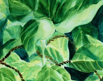"""Original watercolor painting of tropical plant leaves, close up leaves, 9"""" x 12"""" Tropical Leaves in Light by Lauren Grant"""