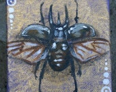 """Original acrylic 4"""" x 4"""" x 1.5"""" canvas horned beetle specimen w/ gold painting by Kali Wallace"""