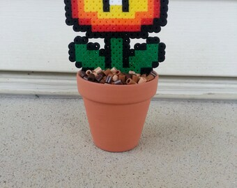 Potted Fire Flower