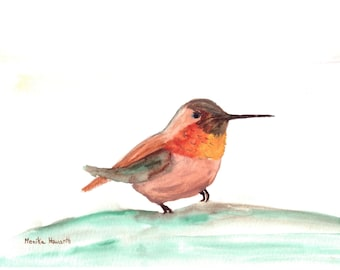 Hummingbird art, bird art, original watercolour painting, bird watercolour, tropical bird art, 10 x 7 inch