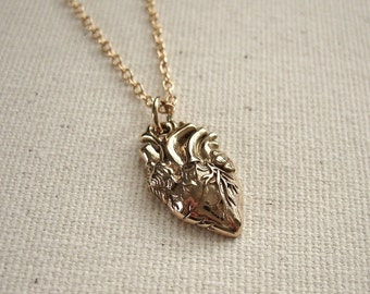 Anatomical Heart Necklace Bronze on Gold Filled Chain - Love Jewelry