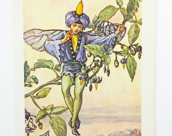Nightshade Fairy Flower Fairy, Flower Fairies Picture, Cicely Mary Barker Print, Fairy picture