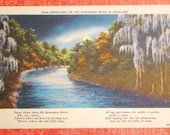 Vintage Postcard, Moonlight on the Suwannee River in Dixieland - 1940s Linen Paper Ephemera