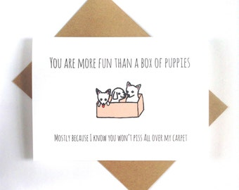 Funny friendship or love card, you are more fun than a box of puppies, card for boyfriend, girlfriend, best friend