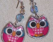 Cute Pink and Blue Owl Earrings