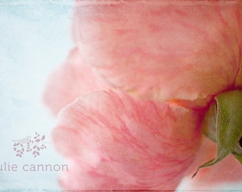 """Pink Rose Photograph - 11"""" x  14"""" -  Fine Art Photographic Paper - Floral Art Photography  - Water Colour Styled - Pink Flowers"""