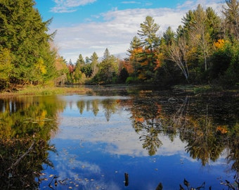 Fall Waterscape Photograph