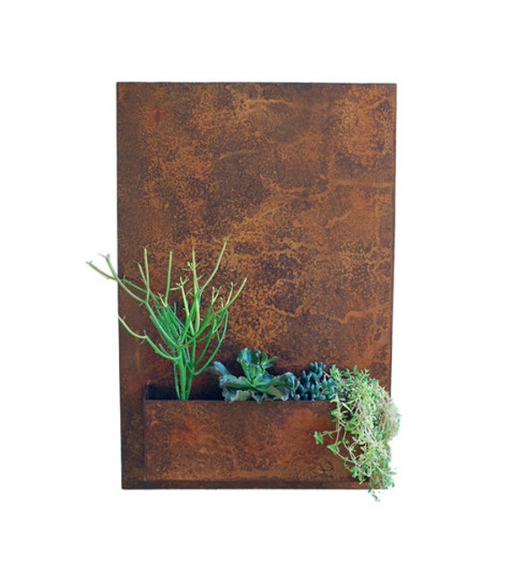 20 x 30 vertical garden metal succulent wall by urbanmettle for Indoor succulent wall