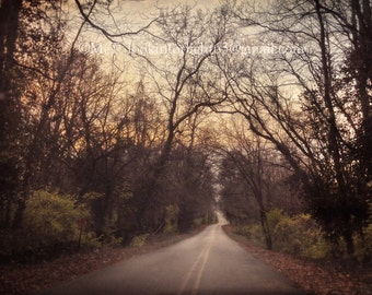 Indiana Photography, Midwest Country Road, Winter Woodland Road, Road through Trees, Midwestern Journey, Wallace Creek Road, Indiana art
