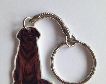 Chocolate Labrador Keyring