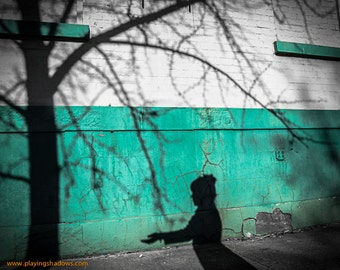 The Giving Tree, PRINT - shadow photo, home decor, wall art, green photo, ready to frame, Shel Silverstein, shadow photo, magical, fine art