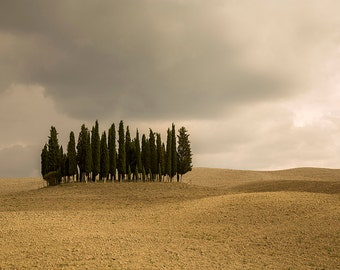 Hills, cypresses photography, Tuscany photography, Italy photography. Fine Art photography, Italian landscape photography.