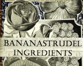 1880s to 1895 BANANASTRUDEL INGREDIENTS - LARGE fruits and flowers. Probably the Best Collage/Ephemera Pack Ever. 25 Large Pieces