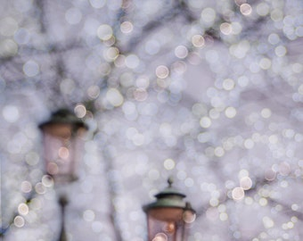 Winter Photography - Fairy Lights, Holiday Lights, Fine Art Landscape Photograph, Large Wall Art
