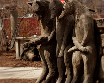 Three Wolves - Chicago Art Installation Photography, The Loop, Fine Art Photography