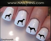 Greyhound Nail Decal Dog Nails by NAILTHINS