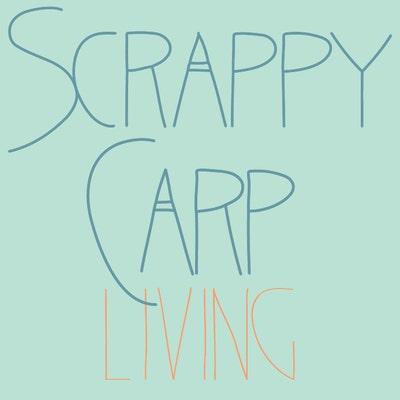 scrappycarpliving