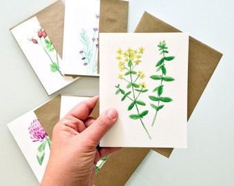 Botanical Art Greeting Card Set - blank inside - set of six - any occasion card set